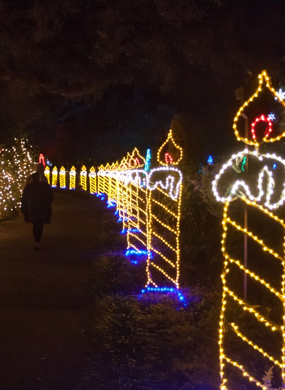 they put on a truly phenomenal light display and not only that its easily walk able for young and old alike its also fully wheelchair and stroller